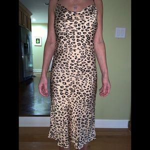Bardot Dresses - Bardot Dress